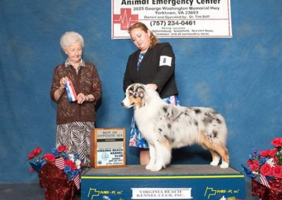 First AKC Points
